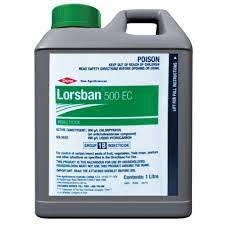 Lorsban 500 EC is a broad spectrum insecticide registered for control of a wide range of insect pests in a large number of field crops, pastures and horticultural crops.
